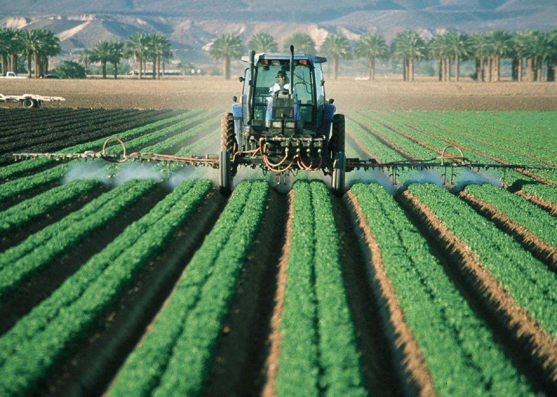 Wien im Bio Trend: Worauf achten bei Bio Lebensmittel?