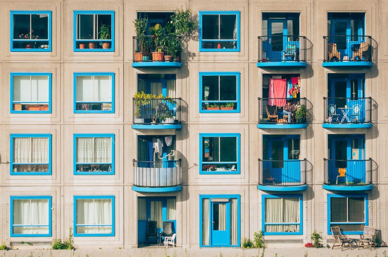 Balkon bepflanzen für die Bienen